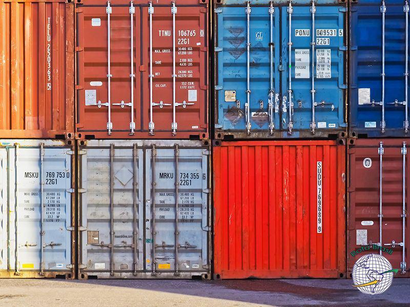 Importador e despacho aduaneiro